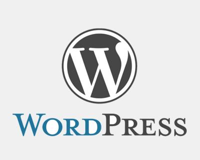 为什么用WP做的网站特别容易被收录?